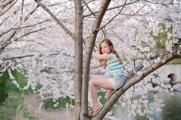 cherry blossom child photograph by Kelsey Gerhard in Washington DC 01