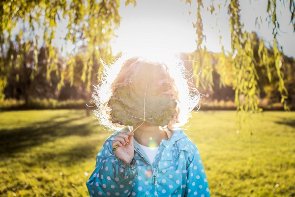 beautiful sunflare photo by Annie Otzon