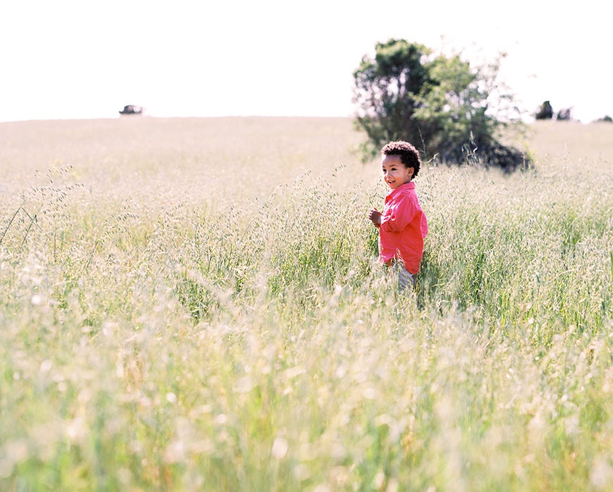 boy playing in field pic by san francisco bay area photographer kim tsui