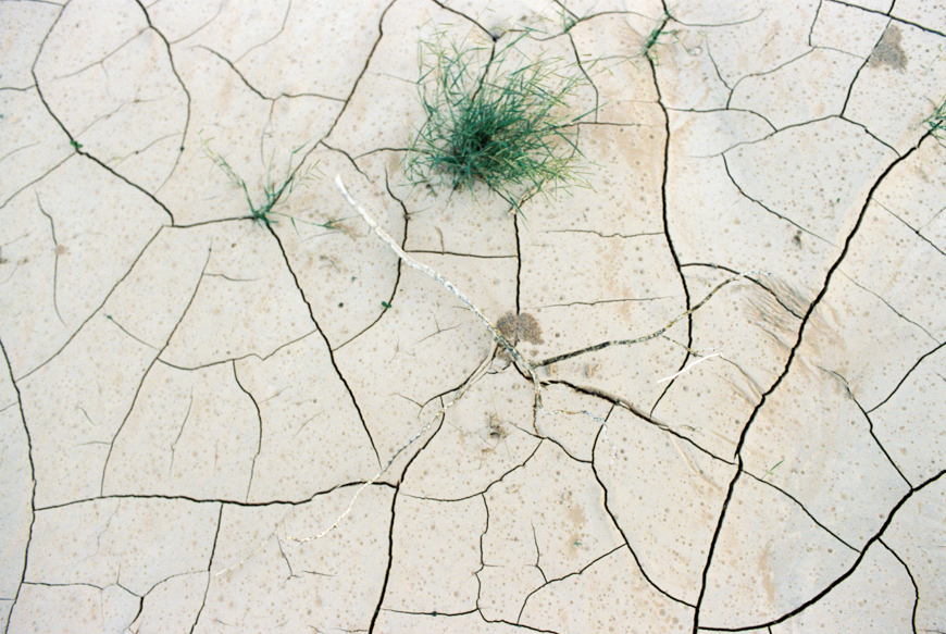 family photographer brooke schwab's photo of cracked dirt