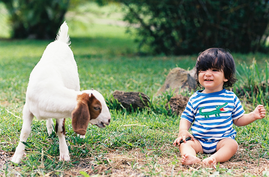 kauai photographer blenda montero's image of boy with goat