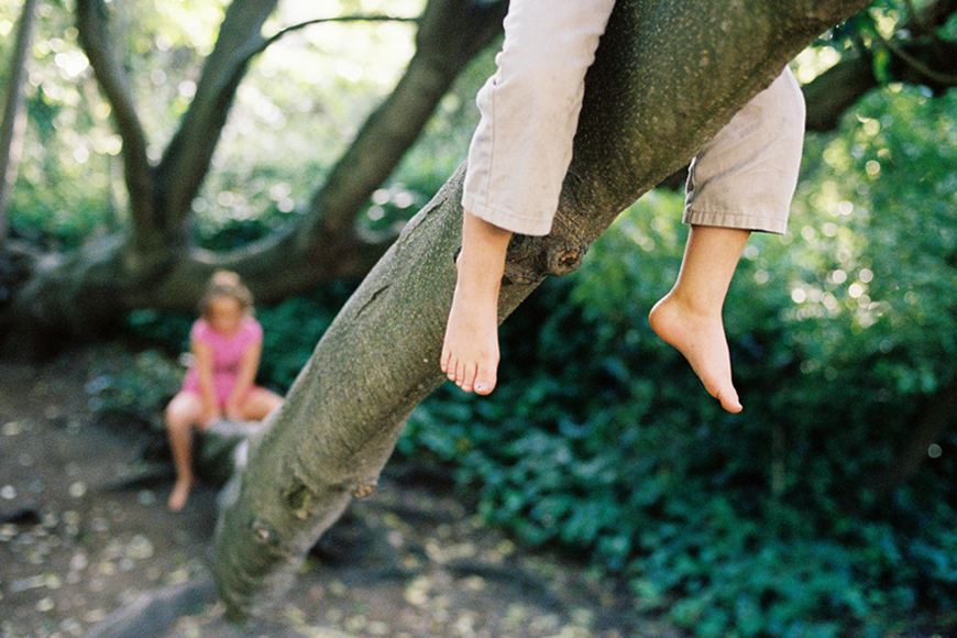 piazza photography's photo of two kids in tree in golden gate park