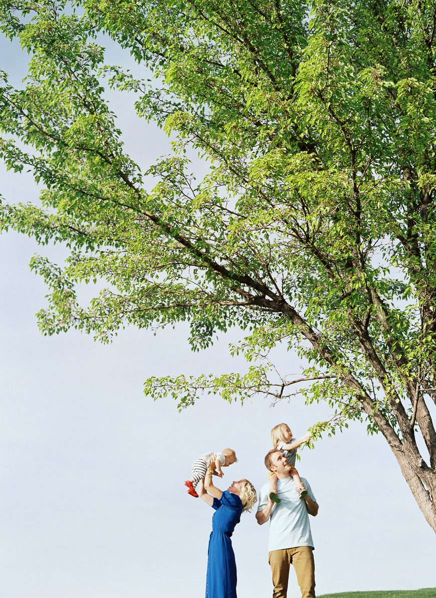 Samantha Kelly Photography 's image of family under tree with negative space