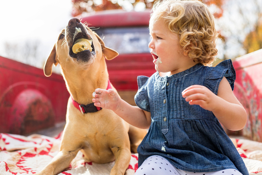 tracey buyce saratoga ny family photographer's image of dog eating toddler's ice cream cone