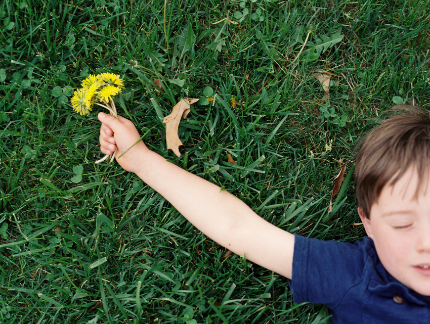 family photographer mara wolff's image of boy on grass holding yellow flower