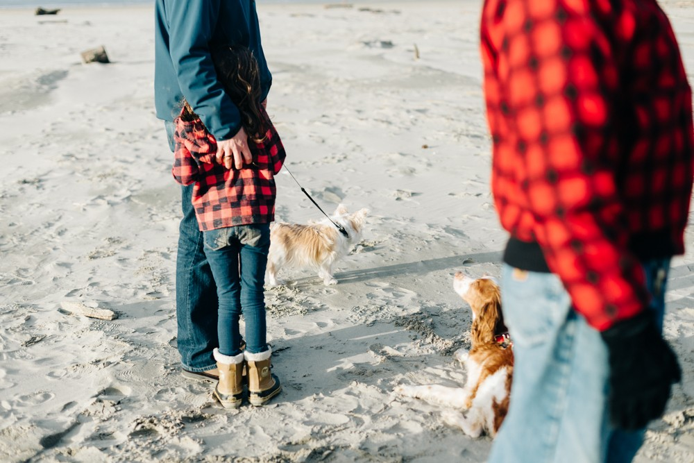 family with dogs on beach by k dimoff photography