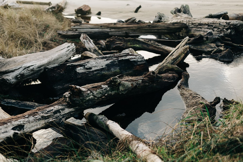 picture of tide pools on Oregon coast by k dimoff photography