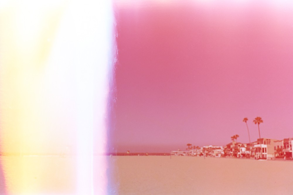 pink palm tree image on film by kiera eve