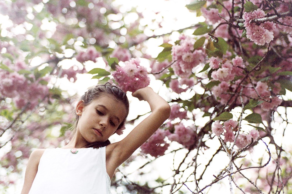 young girl in cherry blossom tree by kiera eve