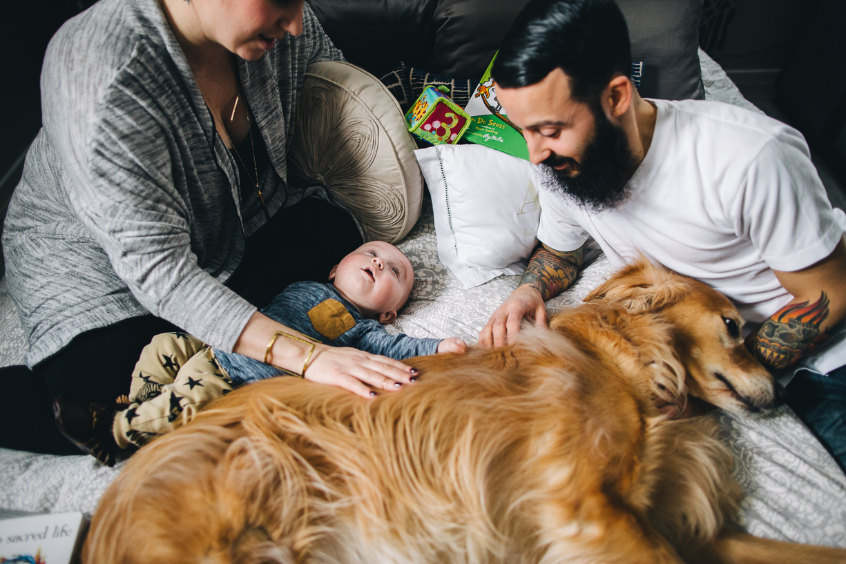 pic of a family and dog by Philadelphia photographer Parikha Meta