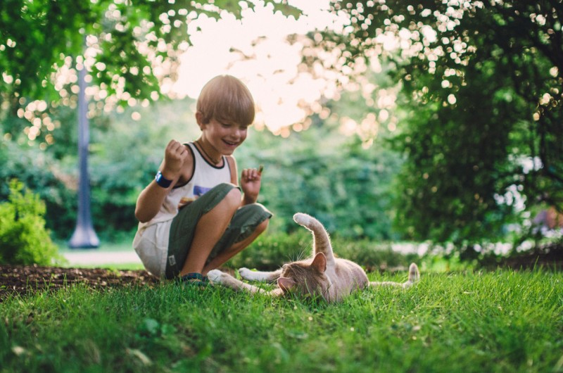 image of boy playing with cat outside by ali deck