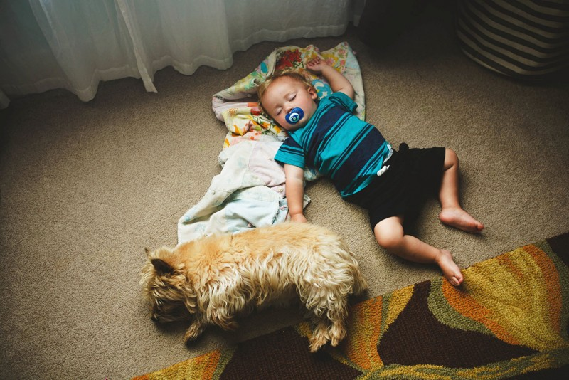 picture of toddler sleeping on floor with dog by chelsey hawes