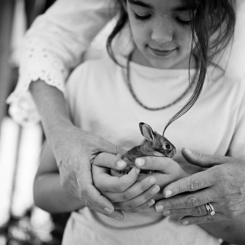 photograph of girl holding baby bunny with mother hands helping black and white by erin hughes