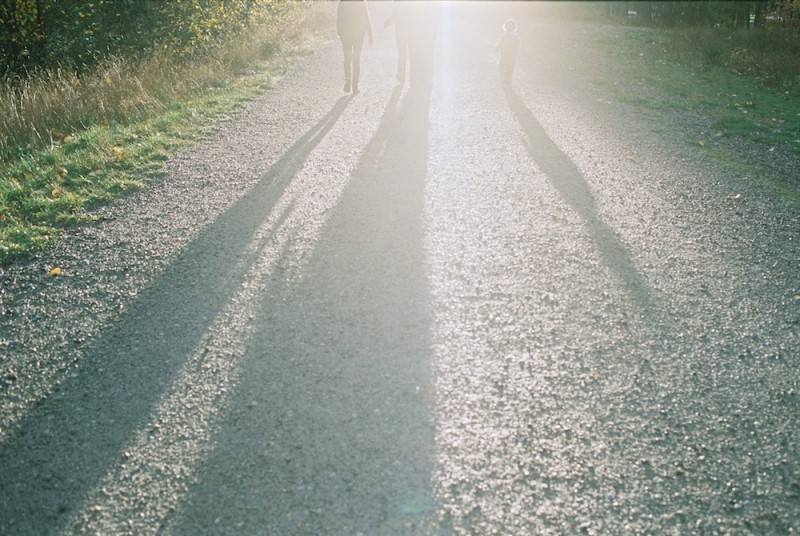 rebecca siewert's film image of family walking towards sun with strong highlights