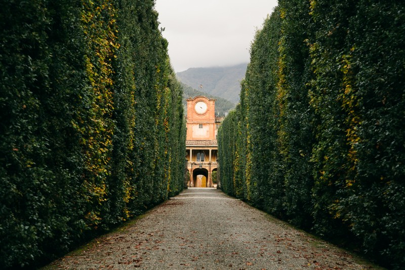 15 Greenery flanks a path in a formal garden in Italy by Punch Photographic