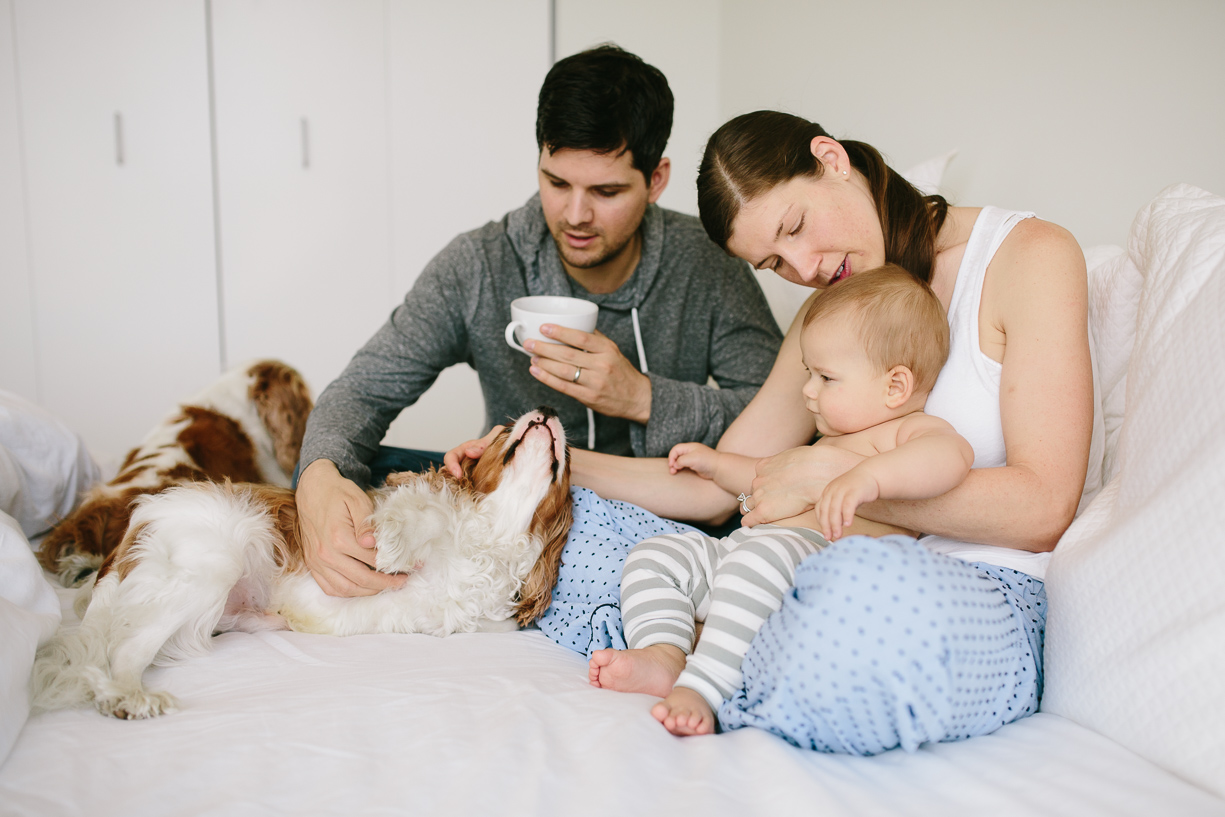 a photo of a family snuggling on the bed by chicago photographer Katie Kett