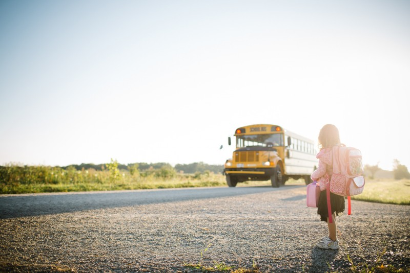 photo fo young girl on road school bus approaching by sherri davis