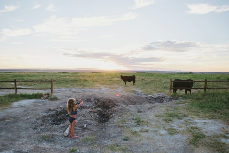 Youg-girl-waves-to-cows-at-sunset-by-Summer-Murdock