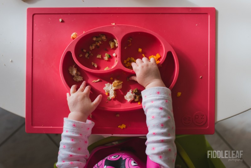 photo from above of baby hands in dinner dish by Kelly Marleau