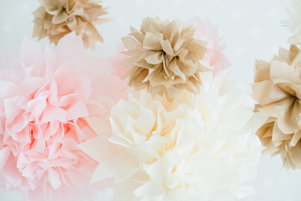 a picture of tissue paper pom pons by boston area photographer laura leibowitz