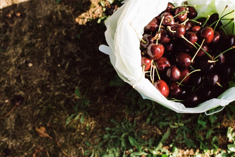 picture of bucket of cherries from above by emily mccann