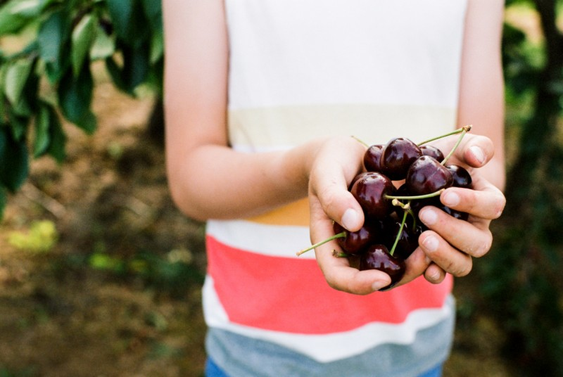 image of boy faceless with hands full of cherries by emily mccann