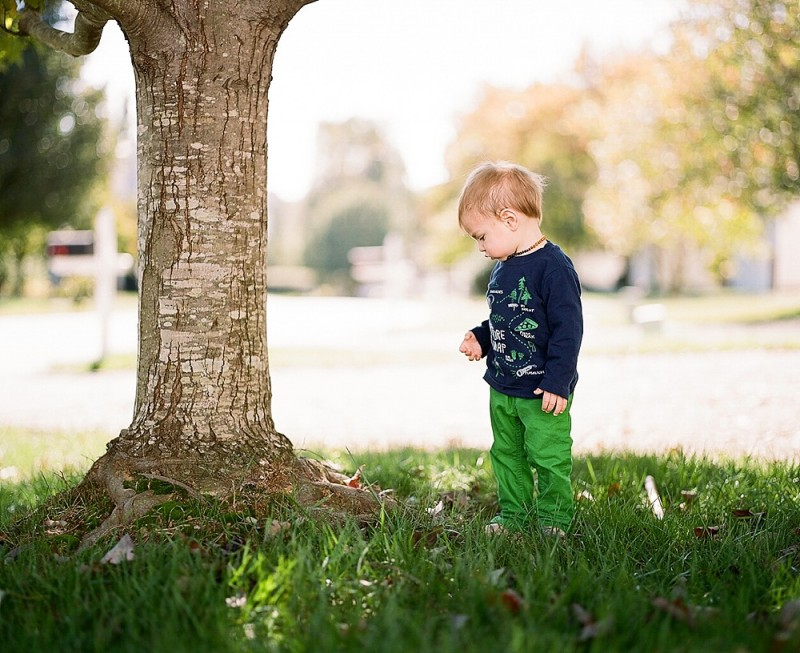 photo of little toddler in grass under tree by jess rotenberg