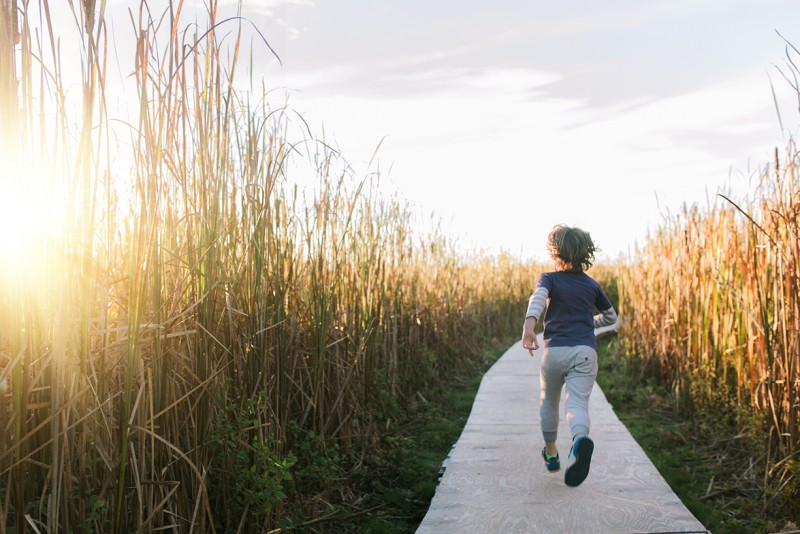 14_A boy runs along a path amidst tall grass at golden hour by Cate Wnek_Into the Wild_Maine